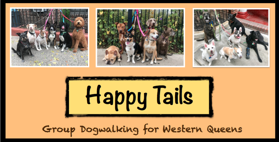 HAPPY TAILS: Group Dogwalking for Western Queens